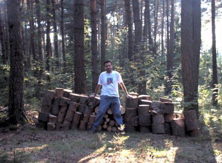Taglio alberi :-o